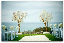 Outdoor Ceremony / by Anita deFleur