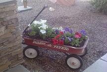 Gardening Ideas / Gardening Ideas that I absolutely LOVE. / by Molly Jo