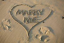 Dream Wedding<3 / by Kristen Taylor