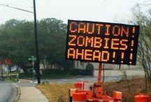 Zombie Nation  / all things zombie / by Melissa Girard