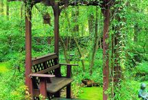 Garten / by i m