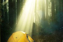 camping / by Richard Merrick