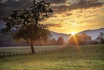 TRAVEL: Tennessee / by Stephanie Sterling