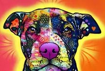 Dog Stuff / by Melissa Jones