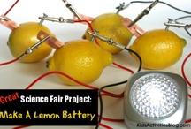 Science Fair Projects / by Nicole Furlonge