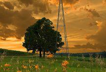 Windmills / by Pieter Smith
