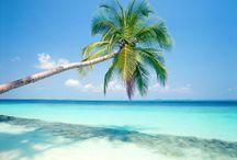 Playa Del Carmen Mexico / by Shila Howe