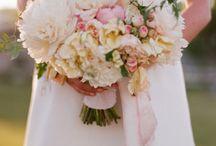 Alessandra / by Dandie Andie Floral Designs