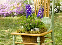 Gardening / by Dana Comstock