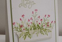 Stamping ideas / by Helen Burnley