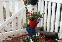Gardening Ideas / by Emily Trust