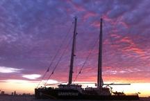 Rainbow Warrior Arrives in Melbourne! / by Greenpeace Australia Pacific