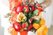 coral wedding theme / Find #floral arrangements, #favors, #clothing, #accessories, #jewelry, #cakes and more in #coral, #salmon, #persimmon, and #peach hues / by GCDSpa - Emily Caswell