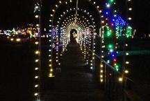 Irvine Park & Zoo / by Chippewa Falls Main Street
