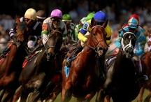 Kentucky Derby / by Terri DesRoches