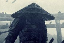 Japanese Warriors  / by Richard Disley