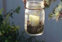 jars / by Brittney Ramey