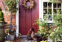 Front Doors  / by Claire Miles