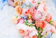 Flowers / by Tasneem Roc
