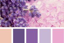 Colour Palette / by Keiko Umeda