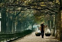 Vietnam / by Lymell