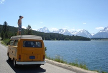 """I Am Intrepid / Check out some of the best entries from our May 2012 """"I Am Intrepid"""" competition. / by Intrepid Travel"""