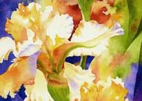 Watercolor 1 / by Doni Hall