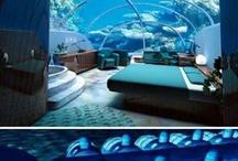 Hotels in Oceania / by Nusatrip Travel