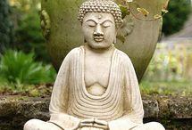 Meditation and Serenity Garden / Love, Meditation, Serenity, Healing, Gardening, Buddha, Quan Yin, Mahavatar Babaji / by Nuru