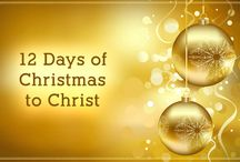 12 days of christmas / by Melissa Gillispie