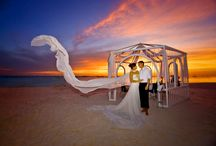 Weddings / by Discovery Hotels & Resorts