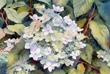 watercolor TWO / by Vicki Fondren