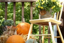 Fall Inspirations / by Patti Hunter Autullo