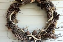 Pine Cones / by Mary Ann Miller