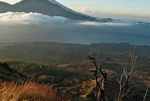 Indonesia / by Huub Vervoort