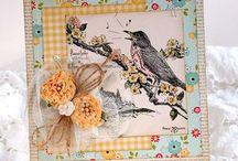 Bird Cards / by Judy Duncan