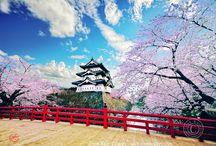 Japan / by Barba Bakufu