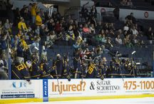 2013 Hockey AHA Champions / First AHA title in program history / by Canisius Athletics