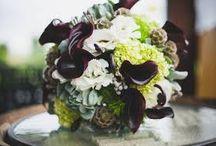 Mindy - RBG / by Dandie Andie Floral Designs