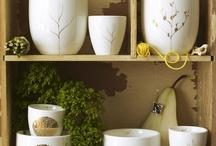 ceramics / by Thorung Tang