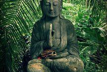 Zen / by Kristen Toney
