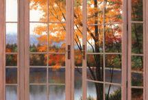 Doors & Windows / by Tana