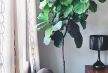 makeover / our personal home improvement board / by Jamie Pepin