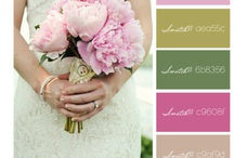 Color Palettes / Lovely color palettes perfect for weddings, family outfit coordination, business branding, home decor, and more! / by Sincerely, Sarah B Photography