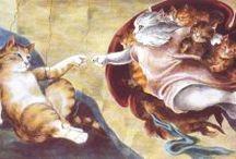 Cat Humor / by Francie Gross