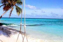 Beach Day! Snorkeling! Sun! Fun! Resort Life! tarafından / Beautiful Water/Olivia Salazar