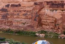 Grand Canyon / by Rita Rotondo