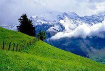 Switzerland / by Mim Bullock