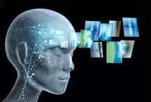 ap psychology states of consciousness essay