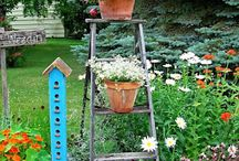 gardens, flowers, & plants, oh my / by Emily Amanda